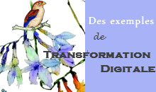 Exemples de transformation digitale